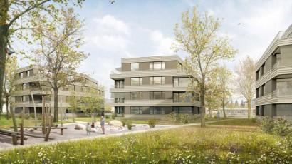 phalt Architekten AG, Zürich
